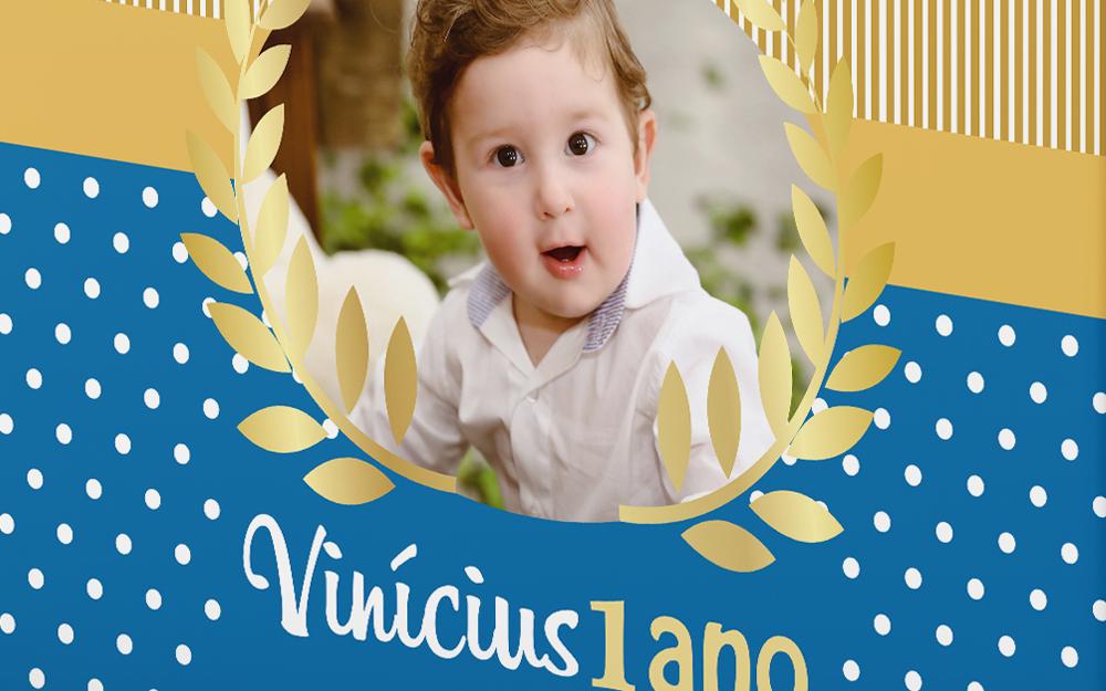 Capa-Viniciusa